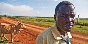 Africa Farmland