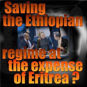 The Somalia Eritrea Monitoring Group: