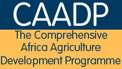 CAADP Logo