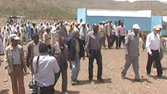 Eritrea Development, Dedub