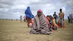 NGO Policy, Somalia Terrorism