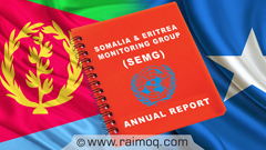 Somalia and Eritrea Monitoring Group